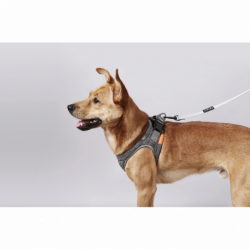PETKIT Harness Air Pro S Grey