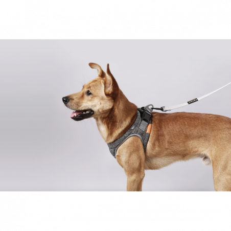 PETKIT Harness Air Pro M Grey